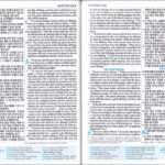 [네이비] 두란노 개역개정판(4판) NIV 영한성경 한영새찬송가 – 중(中).합본.색인 – 최고급 신소재.지퍼식