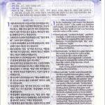 [투톤 다크브라운] 쉬운성경 & NLT 2nd Edition 중(中) 단본.색인 - 무지퍼