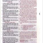 [투톤 다크브라운] 쉬운성경 & NLT 2nd Edition 중(中) 단본.색인 – 무지퍼