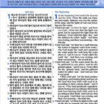 [투톤다크브라운] 개역개정 NIV 한영해설성경 – 대(大).단본.색인 – 무지퍼