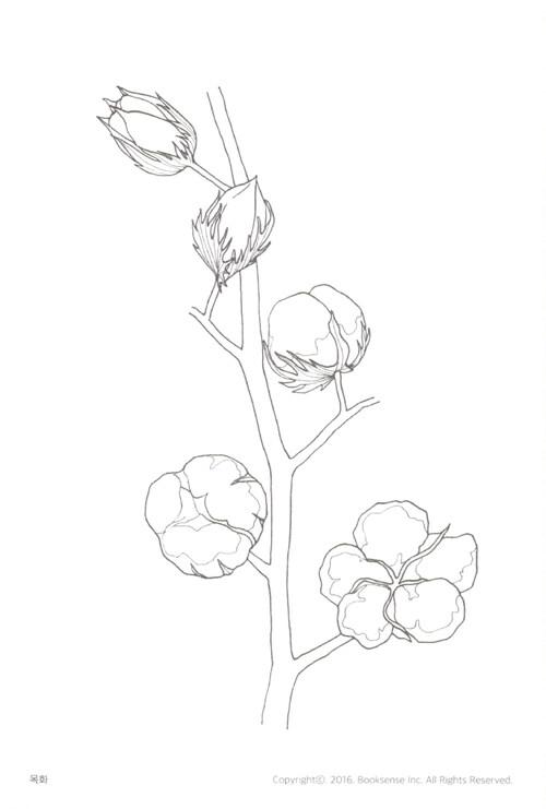 식물이 자라는 시간 컬러링 엽서북 – 색칠하며 배우는 텃밭 작물 16종